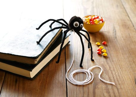 pet spider halloween craft michaels south edmonton common