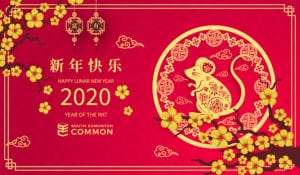 What is Lunar New Year and What Does it Mean?